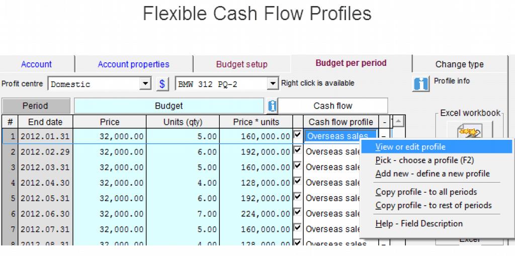 flexible budget cash flow assumptions in Visual cash Focus budgets