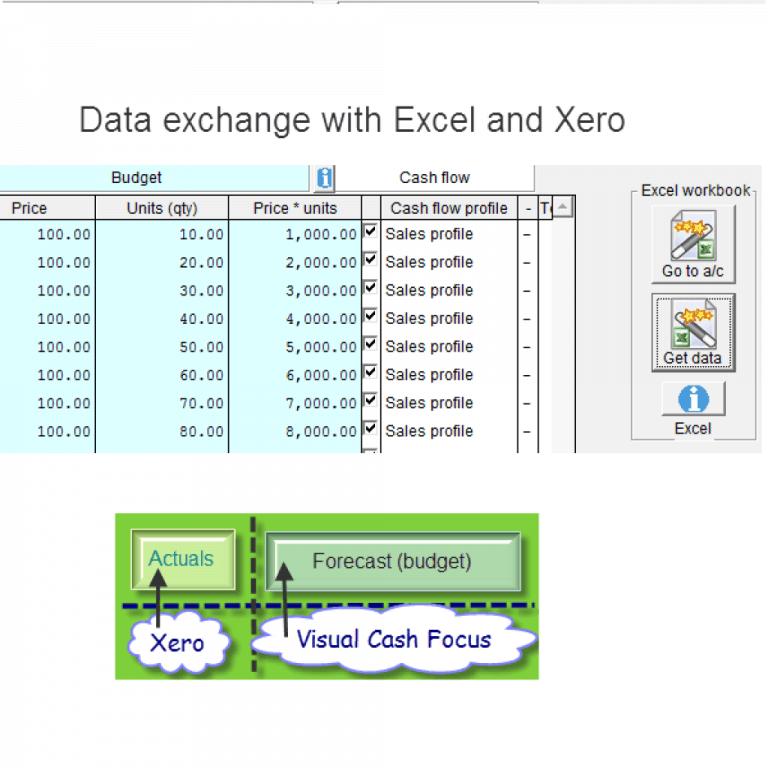Visual cash focus integrates to Excel and Xero accounting