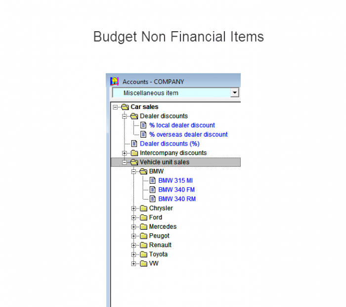 Budget non financial items that are drivers of financial outcomesin Visual cash Focus business buget software